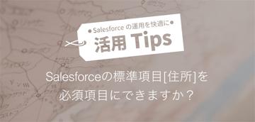 Salesforceの標準項目[住所] を必須項目にできますか?