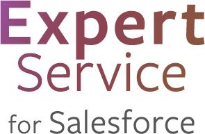 icon_expert_service